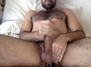 webcam,gay,jalada,gay velludo